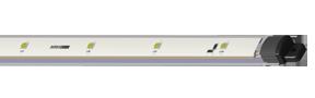 LED Horticultural Module