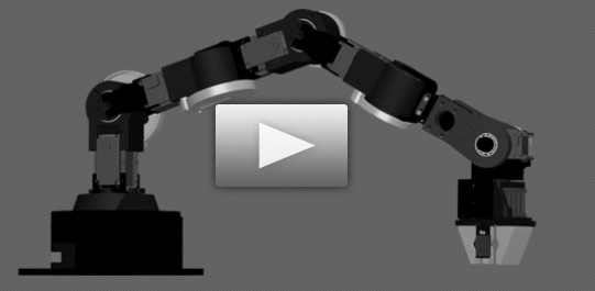 Click here to view the Robai Robotic Systems in Action